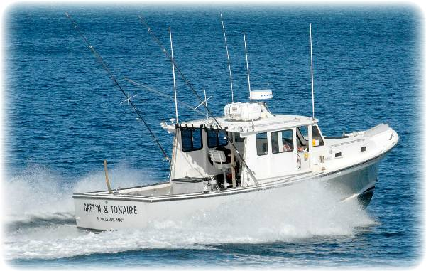 sea charters cape cod cape cod fishing charters deep sea